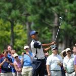 Tiger Woods tại Tavistock Cup. Ảnh: BRIAN BLANCO/AP