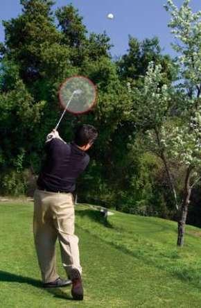 danh bong qua cay Giải quyết những tình huống khó khi đánh golf (phần 1)