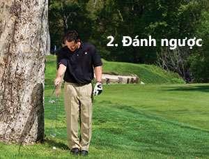 tranh chuong ngai vat 2a Giải quyết những tình huống khó khi đánh golf (phần 2)
