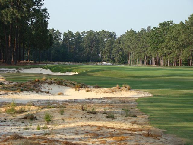Không rough, fairway rộng và cỏ ngắn như green là những điểm khác biệt của sân Pinhurst số 2. Hình chụp: Golf Club Atlas