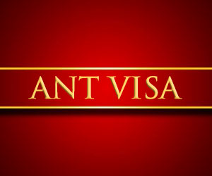 ant lawyers visa